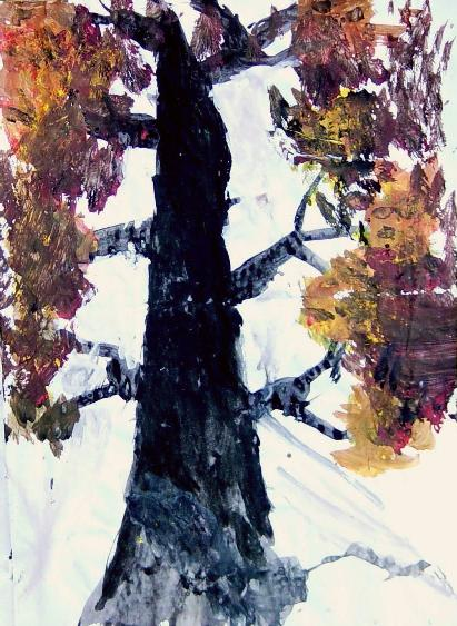 小学生画秋天的枫树-去观察的画